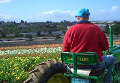 Tractor Driver with View
